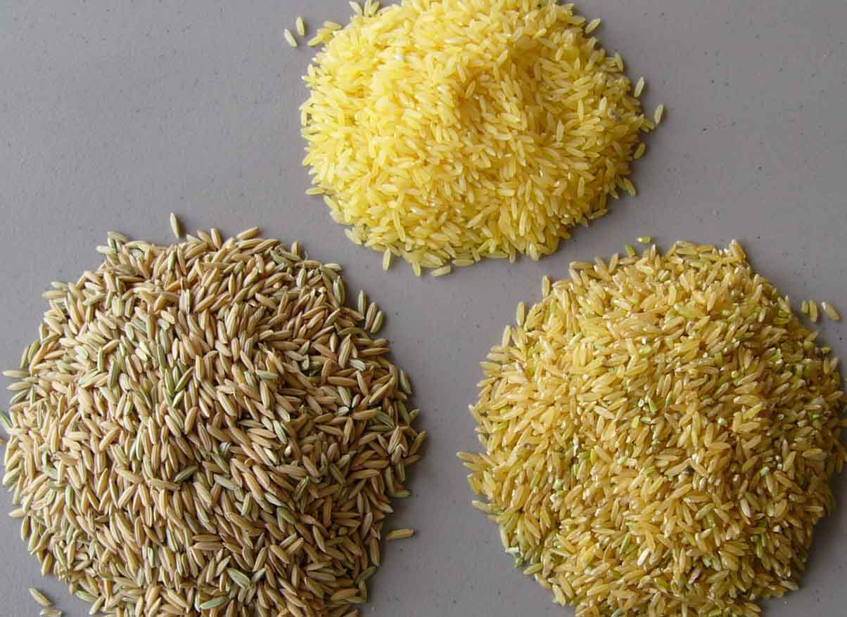 Scrumptious Rice Recipes