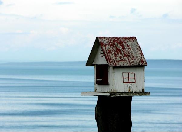 Thinking of Downsizing Your Property?