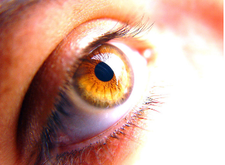Why Glasses Aren't The Only Reason For Vision Tests